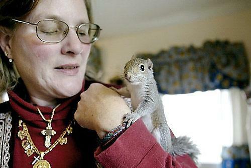Бельчонок Финнеган с хозяйкой. Фото