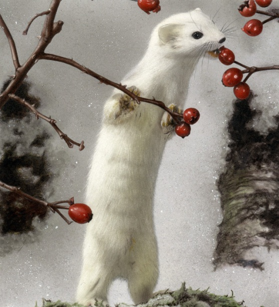 Хорек зимой кушает ягоды. Фото