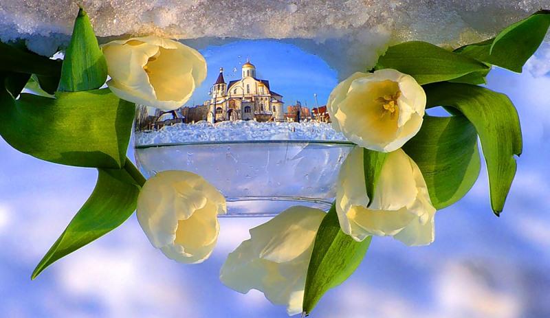 Отражение в бокале с водой. Фото
