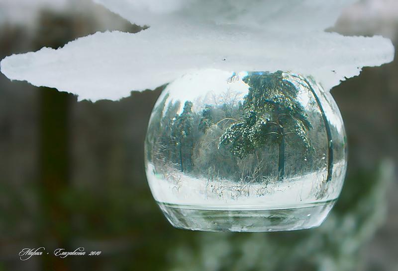 Отражение в бокале с водой. Фото зимы