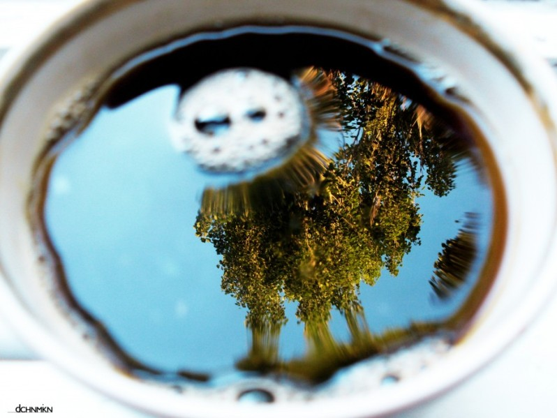 Отражение в кружке кофе. Фото