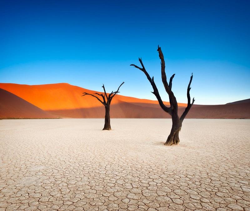 Сюрреалистические пейзажи Мертвой долины в Намибии. Фото