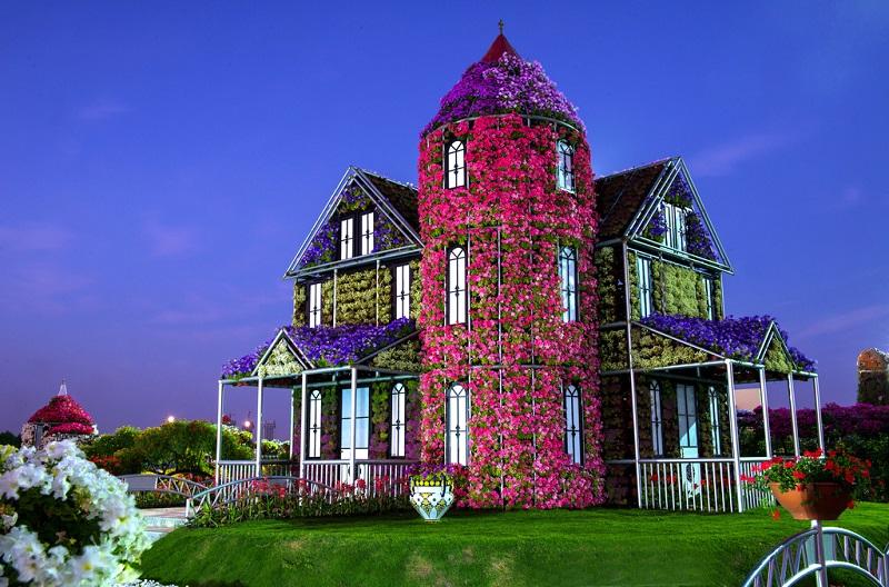 7-Дом из цветов в Дубай Миракл Гарден.jpg (800×528)