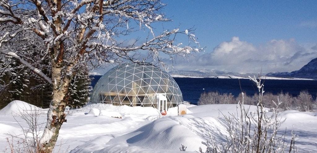 Экодом под стеклянным куполом на севере Норвегии. Фото