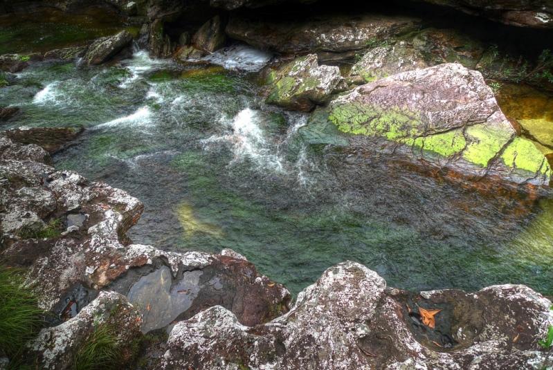 O Caño Crystals é o rio mais bonito do mundo.  Foto