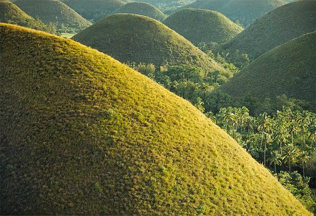 Шоколадные холмы на Бохоле, Филиппины. Фото