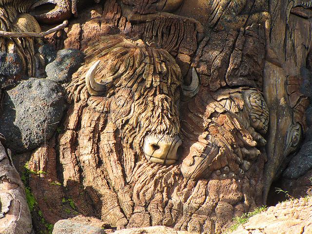 Бизон на Дереве Жизни в Диснейленде. Фото