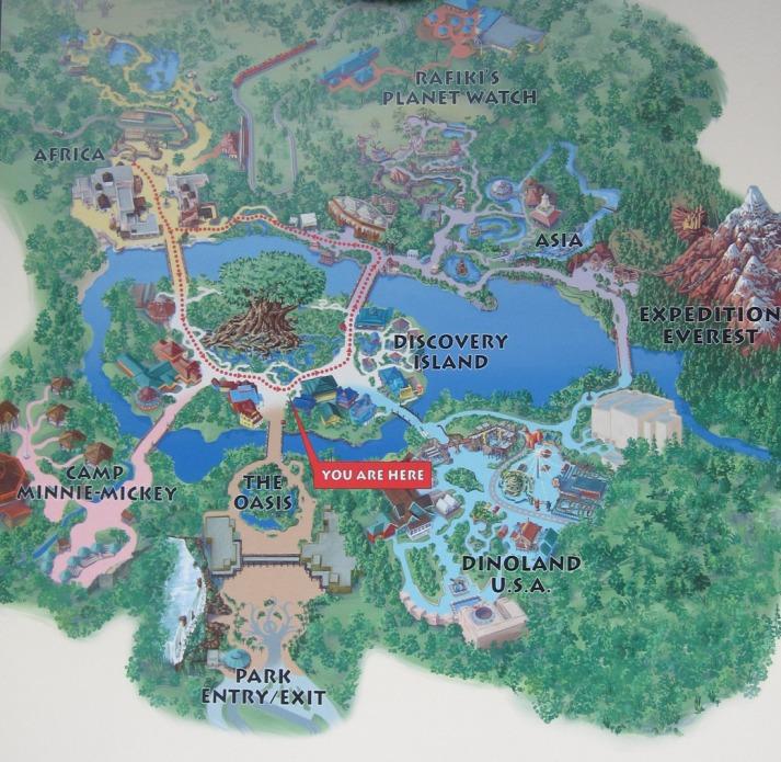 Карта Острова открытий в Королевстве животных. Фото