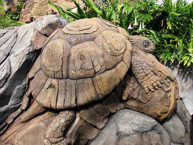 Черепаха дерева жизни в диснейленде