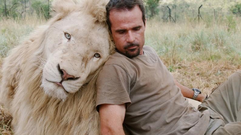 Нежная дружба со львом. Фото