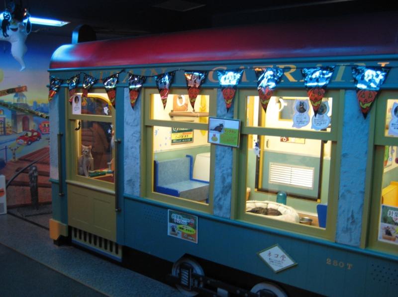 Кошачий поезд в Некобукуро. Фото