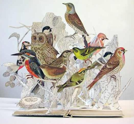 Бумажные скульптуры птиц от Сью Блэквелл. Фото