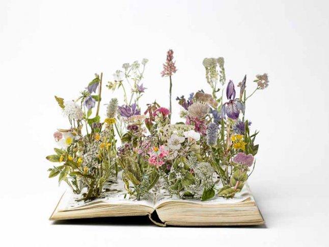 Бумажные скульптуры цветов от Сью Блэквелл. Фото