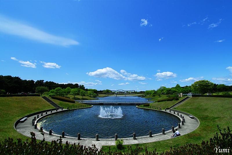 Японский парк Хитачи. Фото