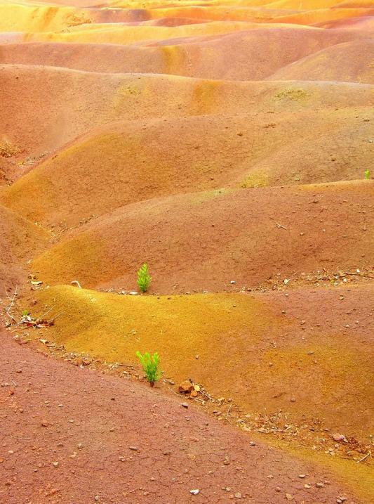 Цветные пески в селе Шамарель (Маврикий). Фото