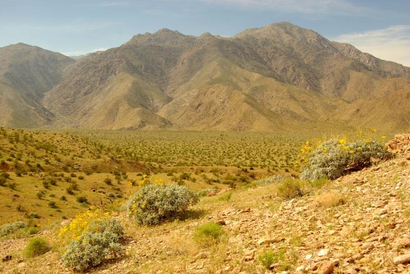 Горный пейзаж пустыни Анза Боррего. Фото