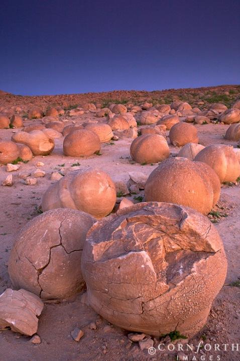 Скопище шарообразных камней в пустыне Анза Боррего. Фото
