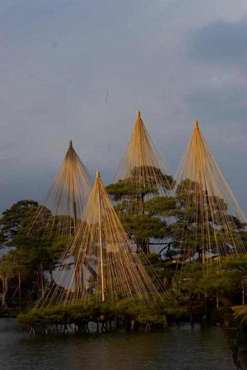Японский осенний парк Кераку-эн. Деревья в воде. Фото