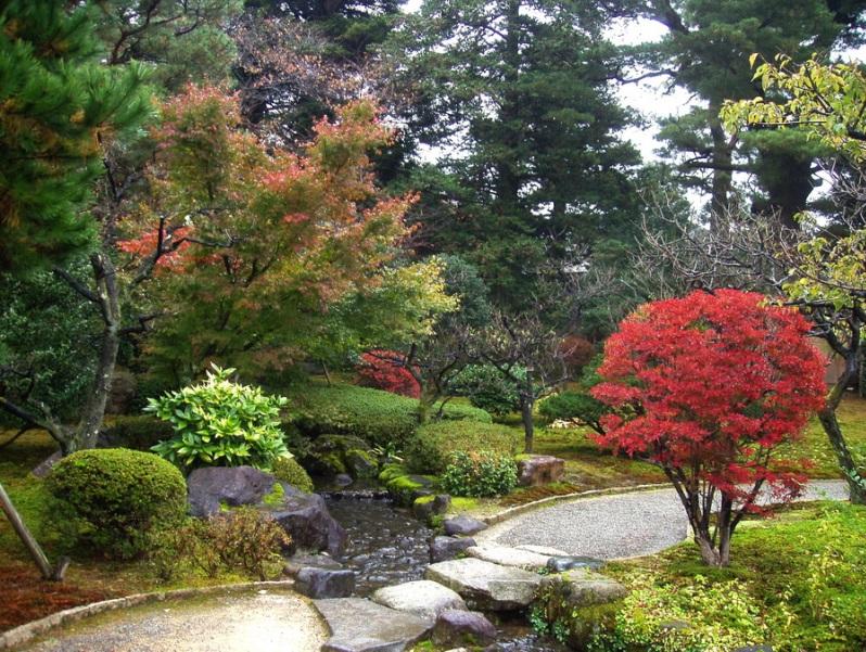 Японский осенний парк Кераку-эн. Разноцветье листвы. Фото
