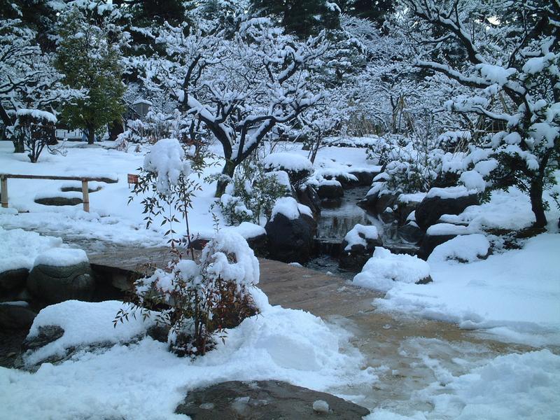 Японский парк Кераку-эн зимой. Фото