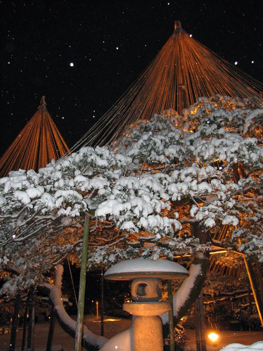 Японский парк Кераку-эн зимой. Ночной вид. Фото