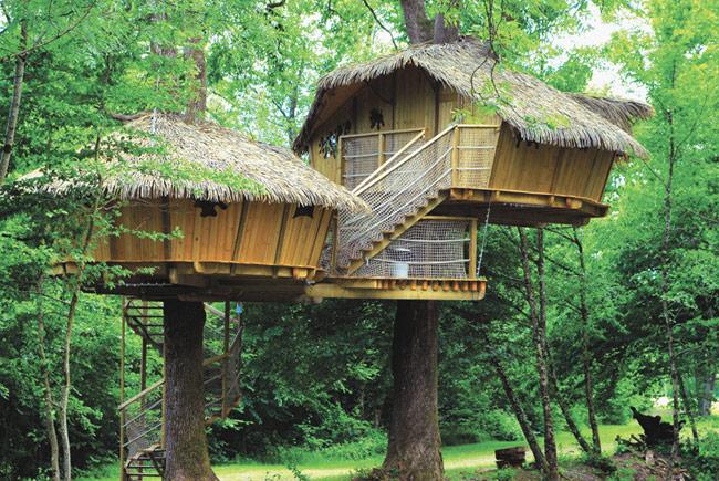 Отель на деревьях во Франции. Фото