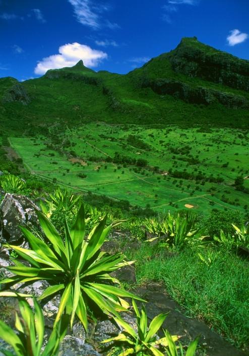 Горы близ Порт-Луи. Маврикий.