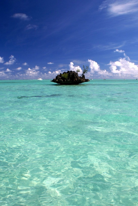 Вид на океан. Маврикий.