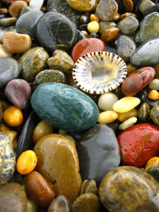 Разноцветные морские камушки и ракушка. Фото