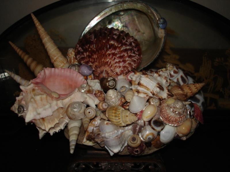 Поделка из морских ракушек. Фото