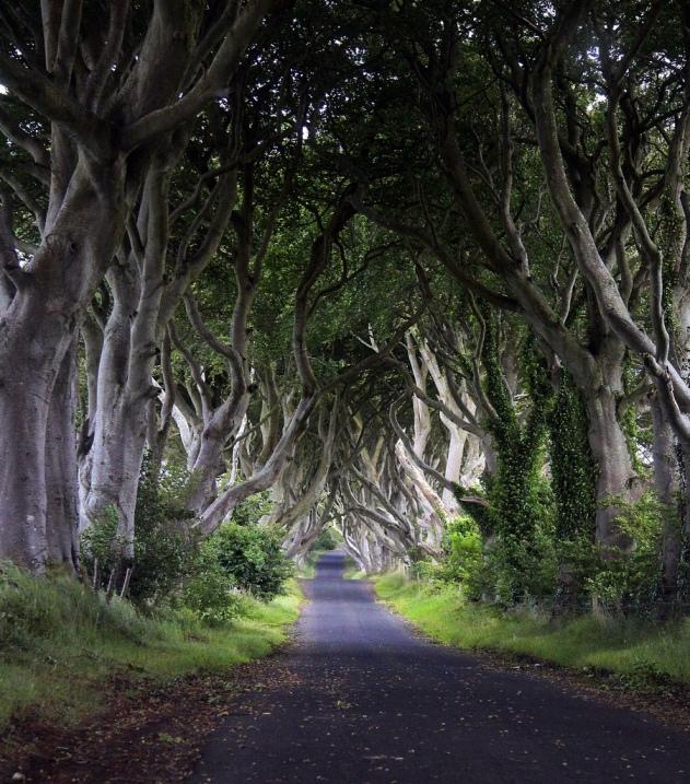Антрим северной ирландии фото