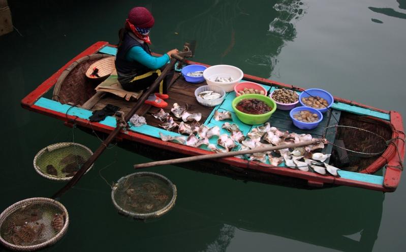 Barco do pescador na Baía de Halong.  Vietnã.  foto