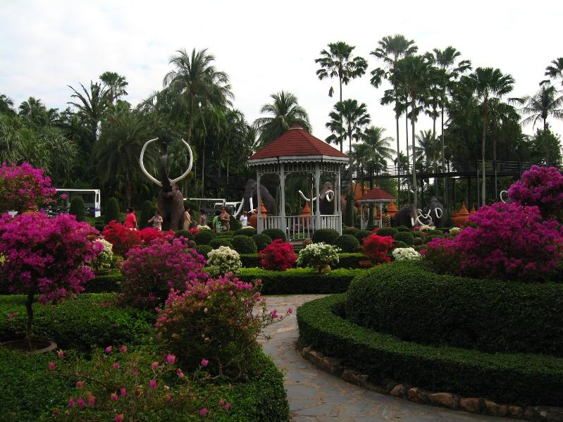 Сад орхидей в Парке Нонг Нуч в Таиланде. Фото