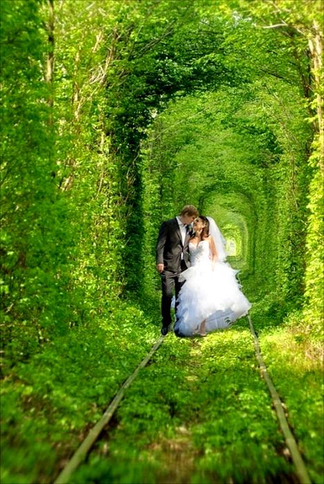 Свадебное фото в Тоннеле любви. Клевань, Украина. Фото