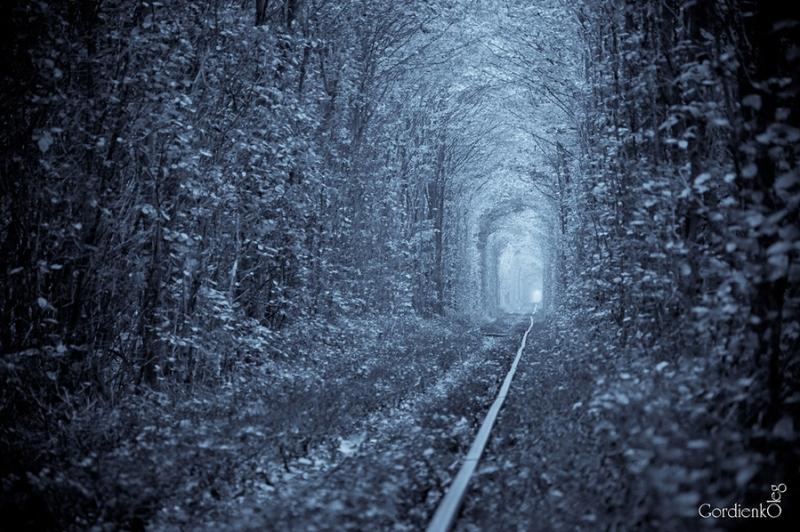 Тоннель любви зимой в городе Клевань, Украина. Фото
