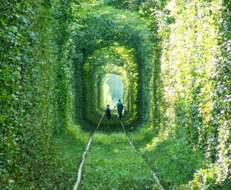 Тоннель любви в городе Клевань, Украина. Фото