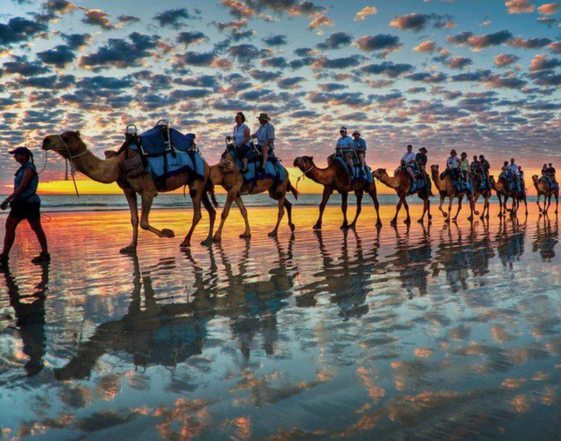 Караван верблюдов на пляже в Австралии. Фото дня
