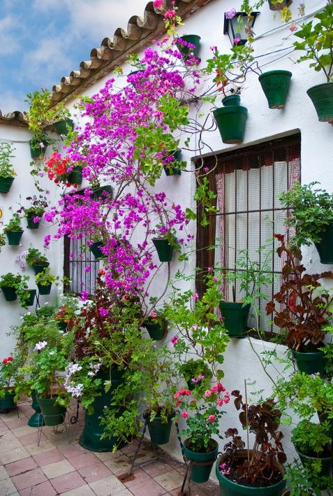 Прекрасный фестиваль цветов в испанских патио. Город Кордова. Фото