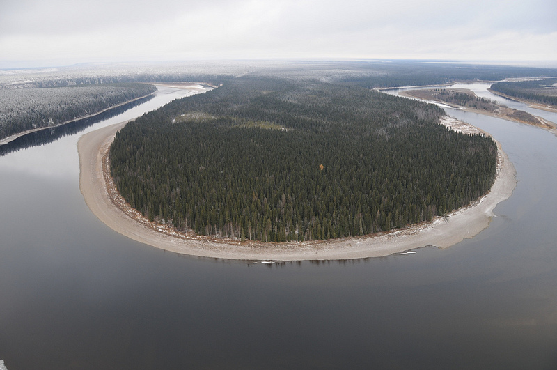 Девственные леса Республики Коми. Заповедники. Фото