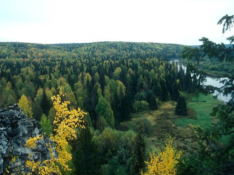 В верховьях реки Уньи. Печоро-Илычский заповедник. Республика Коми. Фото