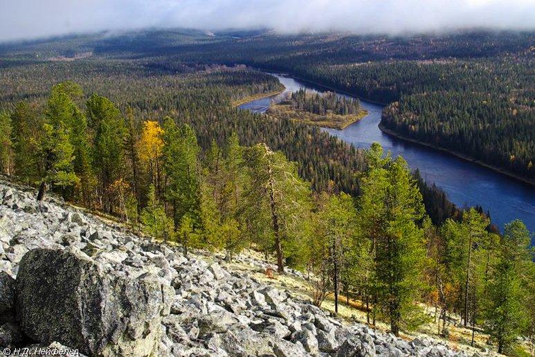 Река Печора в лесах Республики Коми. Фото