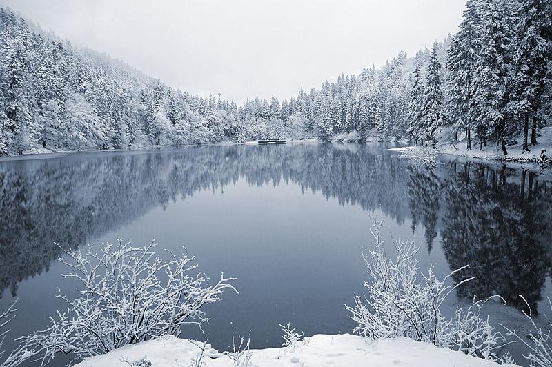 Синевирское озеро зимой. Карпаты. Фото