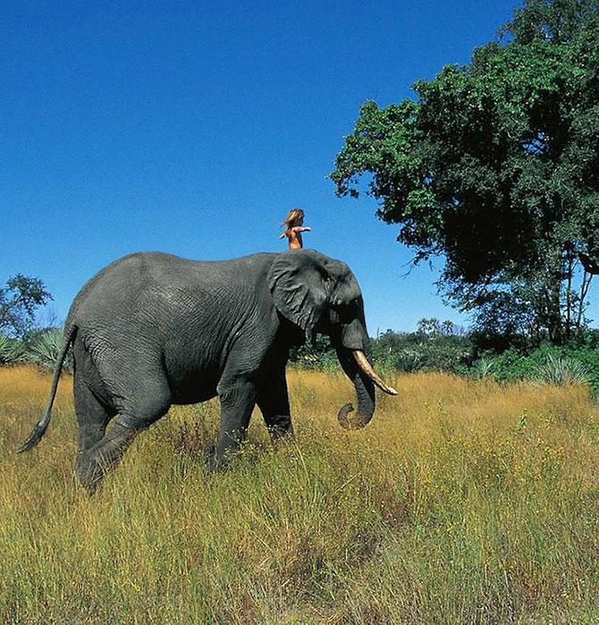 Типпи Дегре на слоне. Девочка-Маугли в Африке. Фото