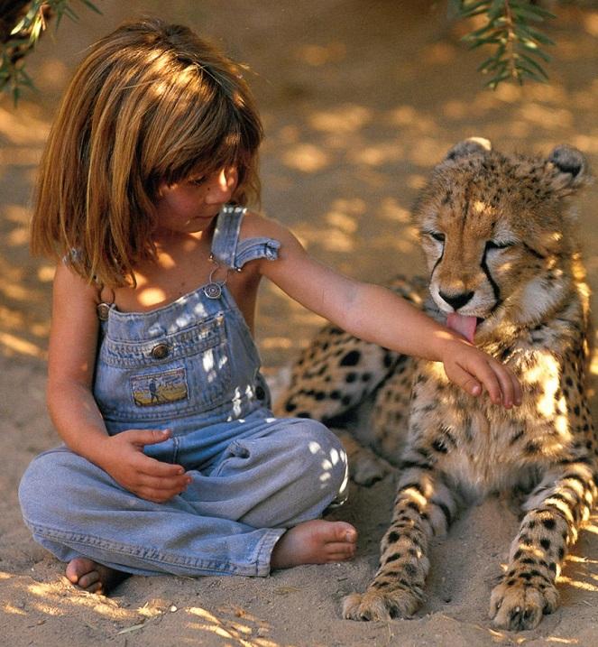 Типпи Дегре и гепард. Девочка-Маугли в Африке. Фото