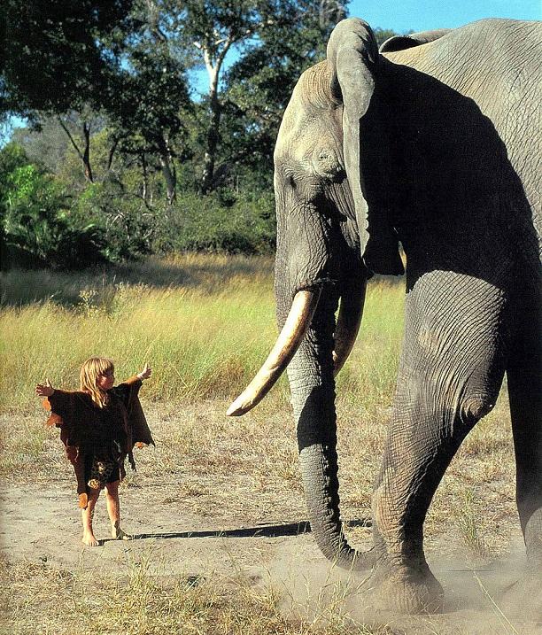 Типпи Дегре  и слон. Девочка-Маугли в Африке. Фото