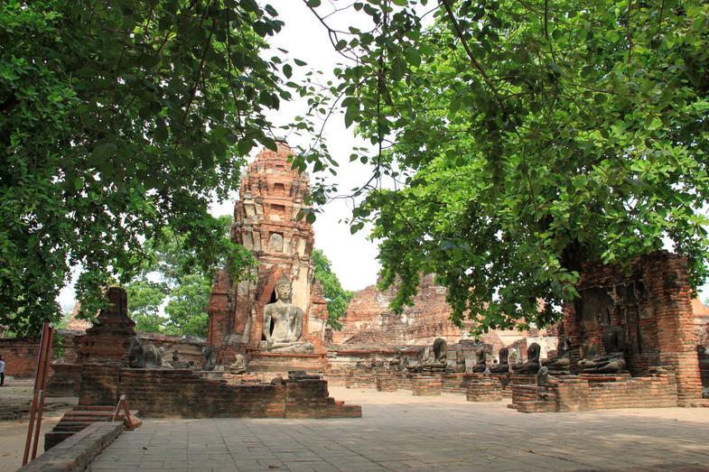 Храм Ват Махатхат в Таиланде. Фото