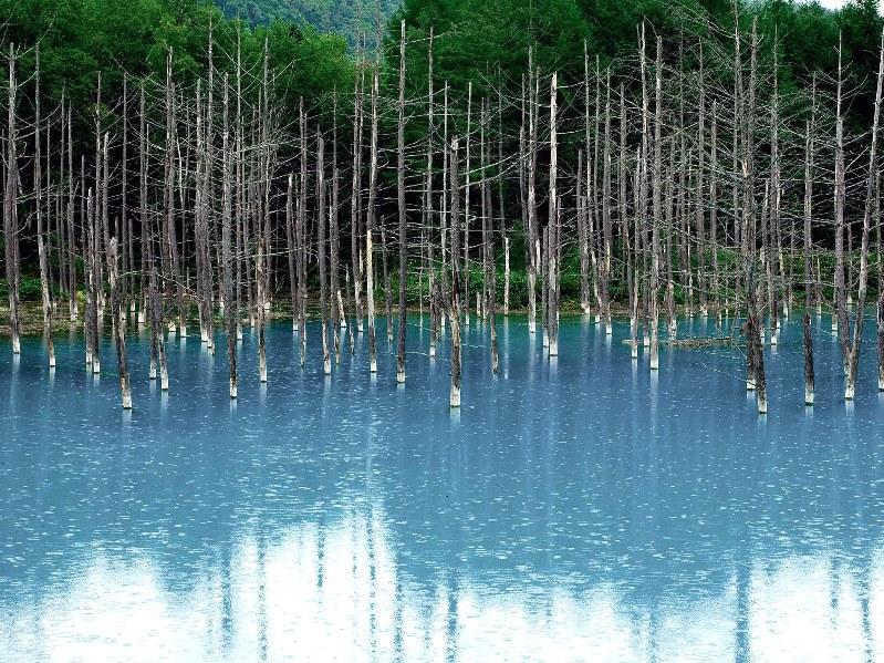 Голубой пруд Биэй в Японии летом. Красивое фото