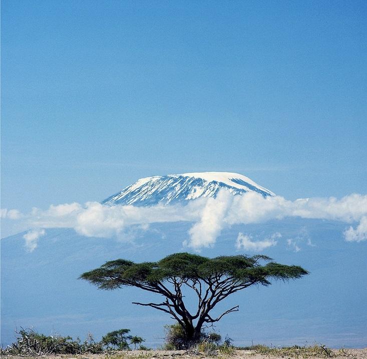 Гора Килиманджаро. Вулкан Кибо. Африка. Фото