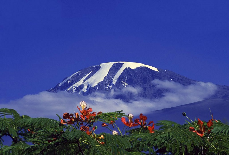 Гора Килиманджаро. Африка. Фото
