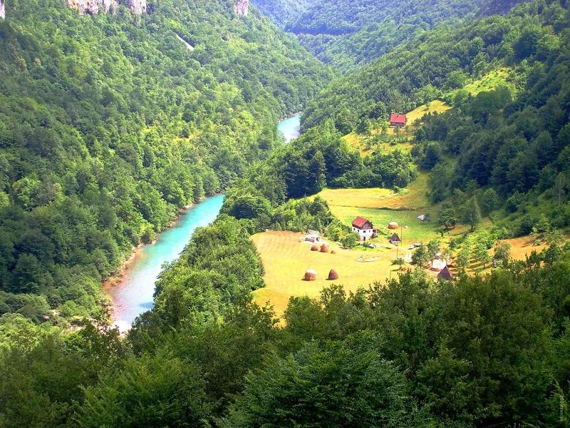Река Тара в парке Дурмитор. Каньон. Черногория. Фото